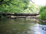 spływy kajakowe, spływ Świdrem